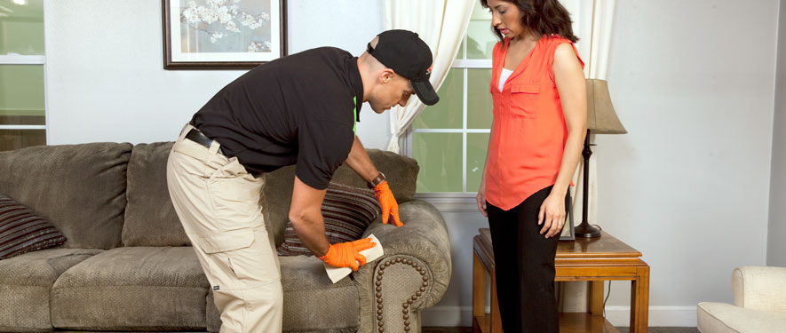 New Bern, NC carpet upholstery cleaning